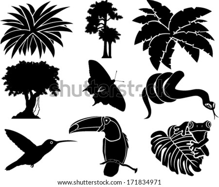 vector set of jungle icons with