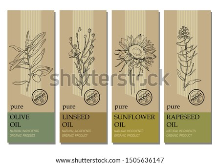Vector set of labels with organic oil plants sketches: olive, linseed, sunflower and rapeseed. Healthy food, bio, organic, natural product. Design template