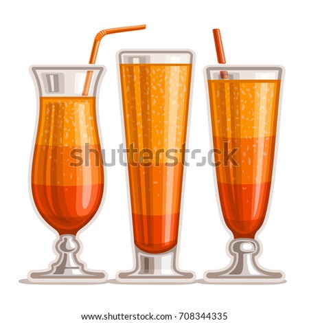 vector set of layered orange
