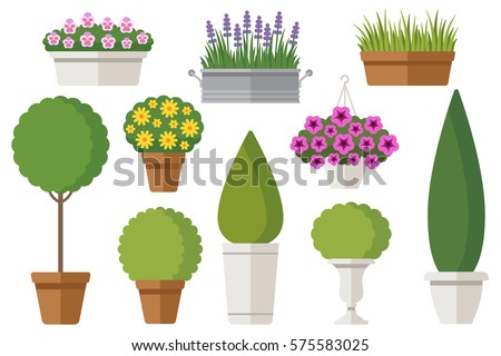vector set of outdoor potted