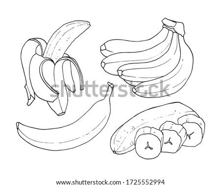 Vector set of outline of bananas. Ripe banana, one banana, peeled banana, bunch of bananas.
