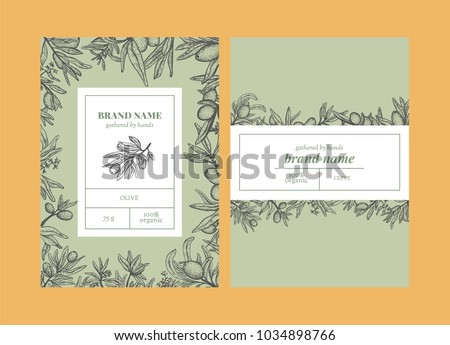 Vector set of package design with olive handrawn elements. Editable packaging template collection with olive leaves and branches.