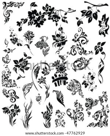 VECTOR Set of patterns, ornaments and flower images