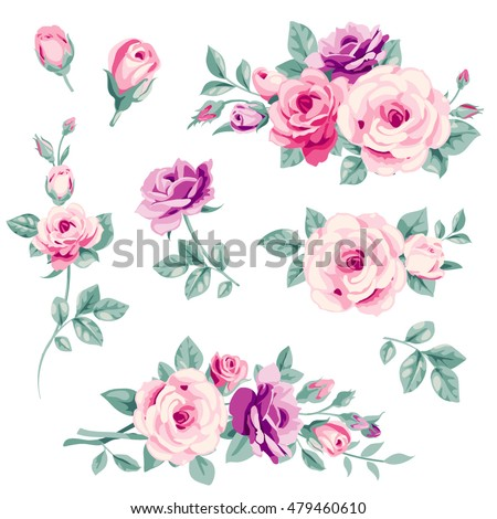 Vector Set Of Pink Roses And Buds Decorative Floral Elements For