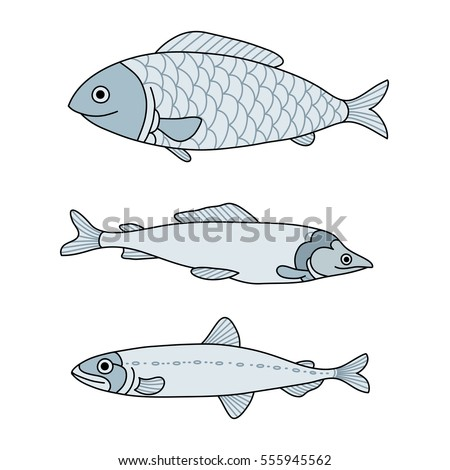 vector set of sea fish menu