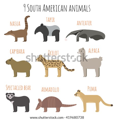 vector set of south american