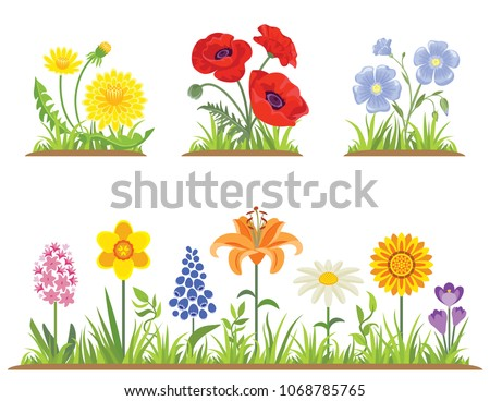 vector set of spring and summer