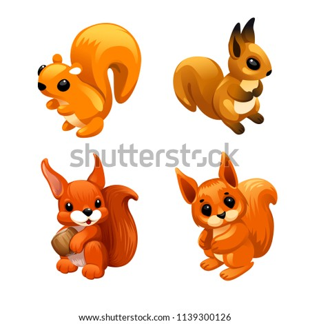 vector set of squirrel with