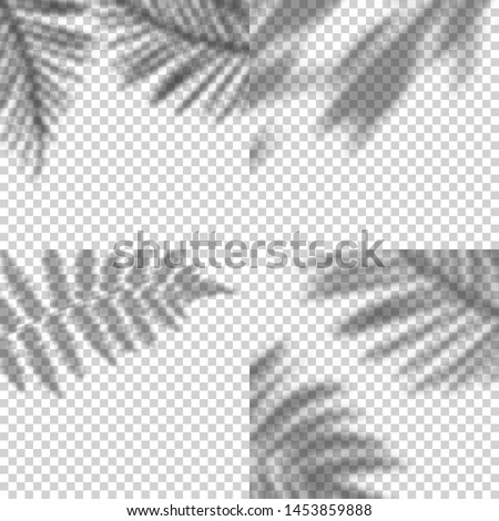 Vector Set of Transparent Shadows of Leaves. Decorative Design Elements for Collages. Creative Overlay Effect for Mockups
