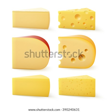 Vector Set of Triangular Pieces of Various Kind of Cheese Swiss Bri Parmesan Camembert Gouda Edem Close up Isolated on White Background