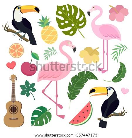 Vector set of tropical leaves. Palm leaf, banana leaf, flamingo, toucan birds, ukulele guitar, pineapple, watermelon. Jungle trees.Botanical (floral) illustration. Stickers