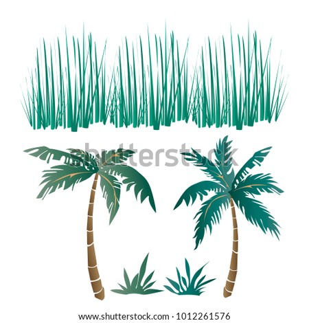 vector set of tropical long