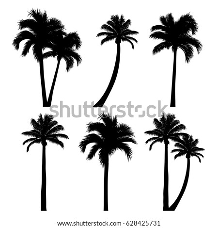 vector set of tropical palm tree silhouettes. EPS