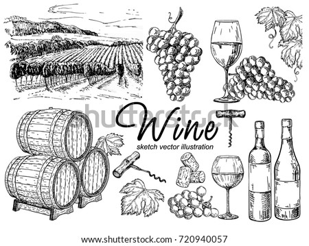 vector set of vine products....