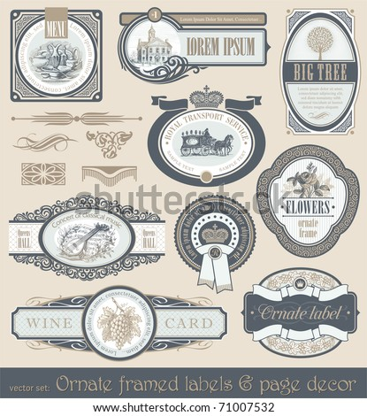Vector set of vintage framed ornate labels & page decor design element - stock vector