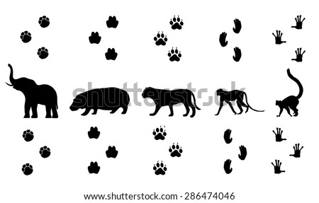 vector set of walking jungle