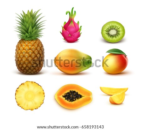 vector set of whole and half
