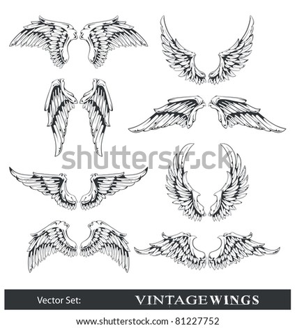 Vector set of wings. All elements are grouped.