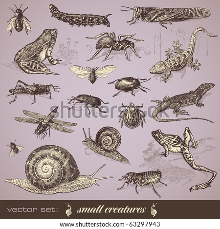 vector set  small creatures