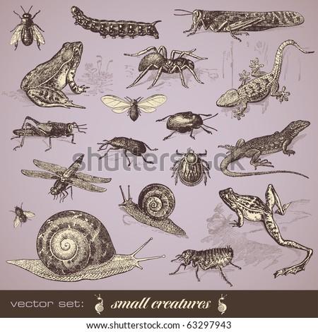 vector set  small creatures