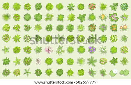 vector set trees top view