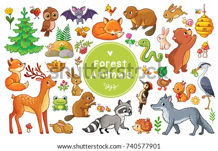 Shutterstock Vector set with forest animals and birds. Collection of insects and mammals in cartoon style.
