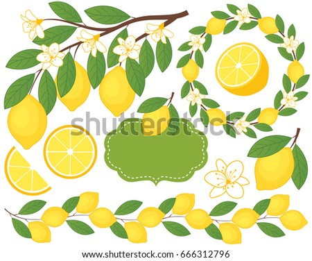 Vector set with lemons includes lemons, flowers, wreath, branch and  a frame. Lemon vector illustration.