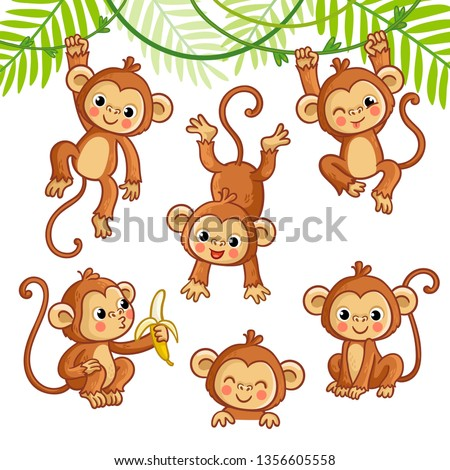 vector set with monkey in