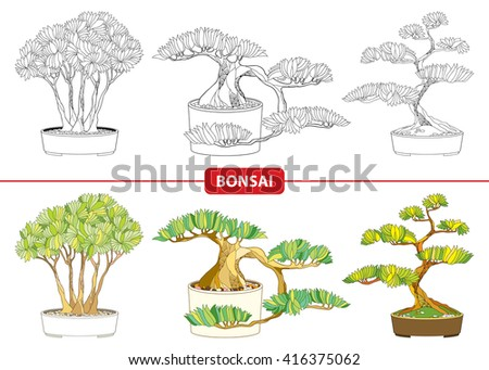 vector set with ornate bonsai