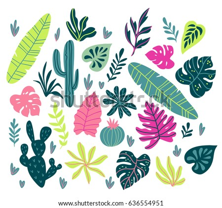 Vector set with wild tropical rainforest plants. Isolated elements of tropic design.