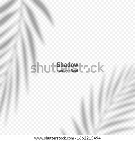 vector shadow overlay effect