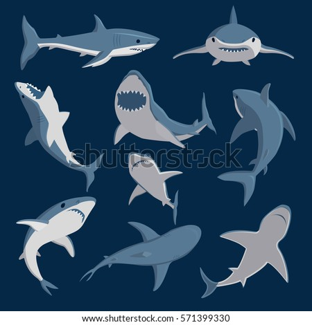 Shutterstock Vector shark comic style character wild fish set.
