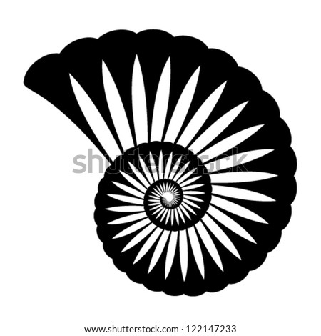 vector shell silhouette