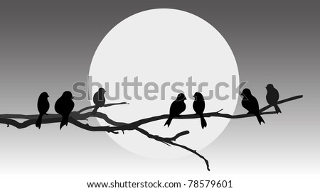 vector silhouette birds on