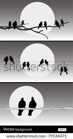 vector silhouette birds set of