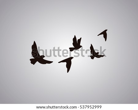 Shutterstock Vector silhouette flying birds on white background. Tattoo