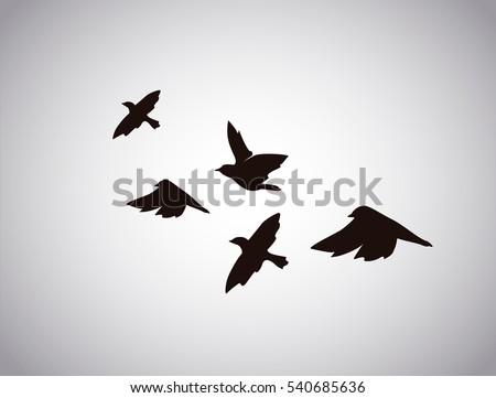 vector silhouette flying birds