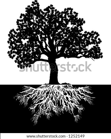 tree drawing with roots. depicting a tree and roots