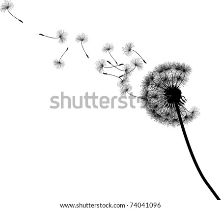 Vector silhouette graphic illustration depicting dandelion seed dispersal