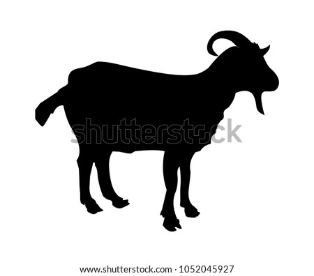 Vector silhouette of a goat isolated on white background