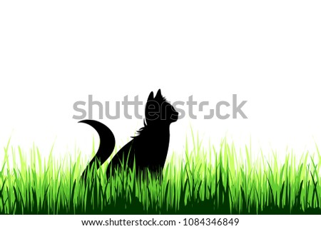 vector silhouette of cat on a