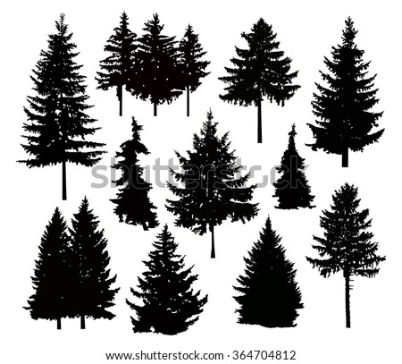 tree vector white. vector silhouette of different pine trees. can be used as poster, badge, emblem tree white h