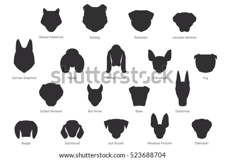vector silhouette of dog breeds