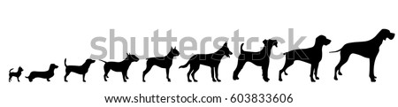 vector silhouette of dog on