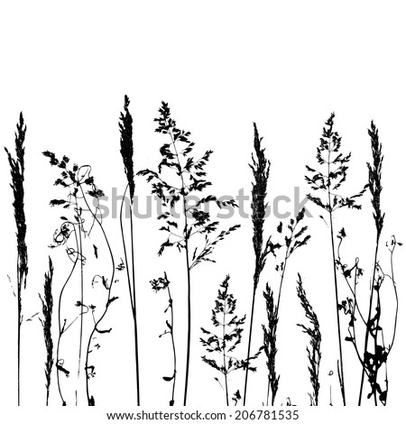vector silhouette of grass on