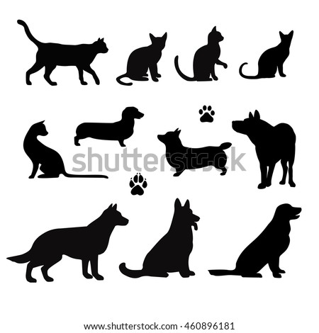 vector silhouette of pet cats