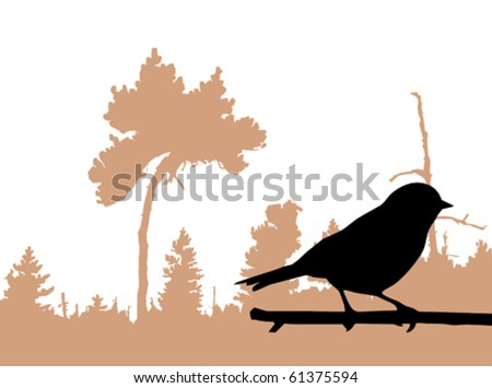 vector silhouette of the bird on branch - stock vector