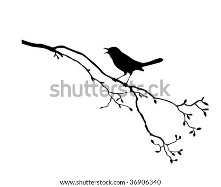 vector silhouette of the bird on branch tree - stock vector