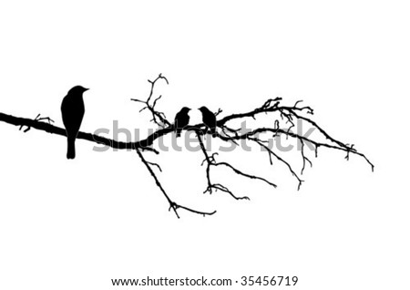 vector silhouette of the birds on branch - stock vector