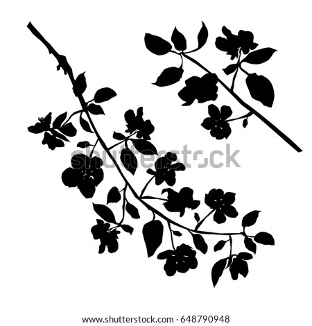 stock-vector-vector-silhouette-of-the-branches-of-apple-trees-with-flowers-black-color-isolated-on-white